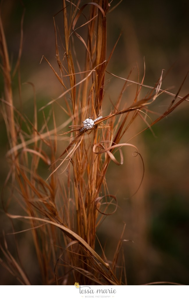 country_field_engaegment_pictures_atlanta_wedding_photographer_willing_to_travel_075