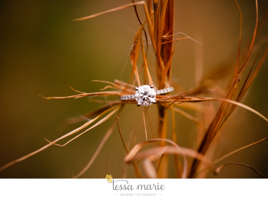 country_field_engaegment_pictures_atlanta_wedding_photographer_willing_to_travel_076