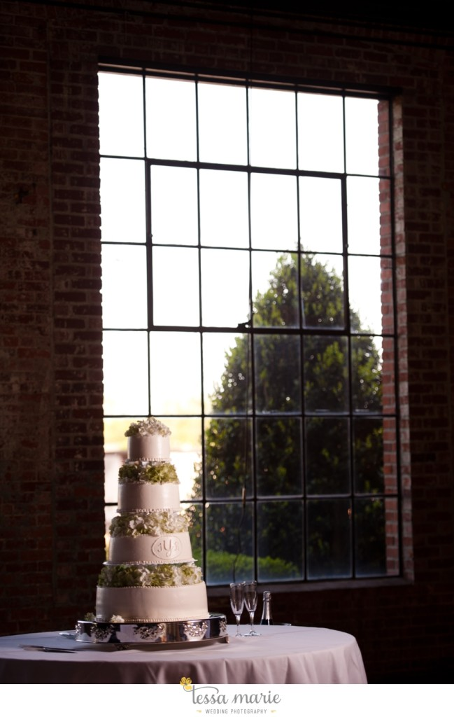 river_mill_event_Centre_columbus_ga_outdoor_Wedding_pictures_tessa_marie_weddings_067