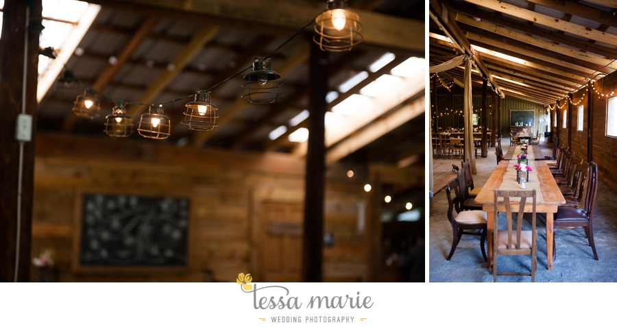 vinewoods_outdoor_wedding_pictures_atlantas_best_wedding_photographer_0113