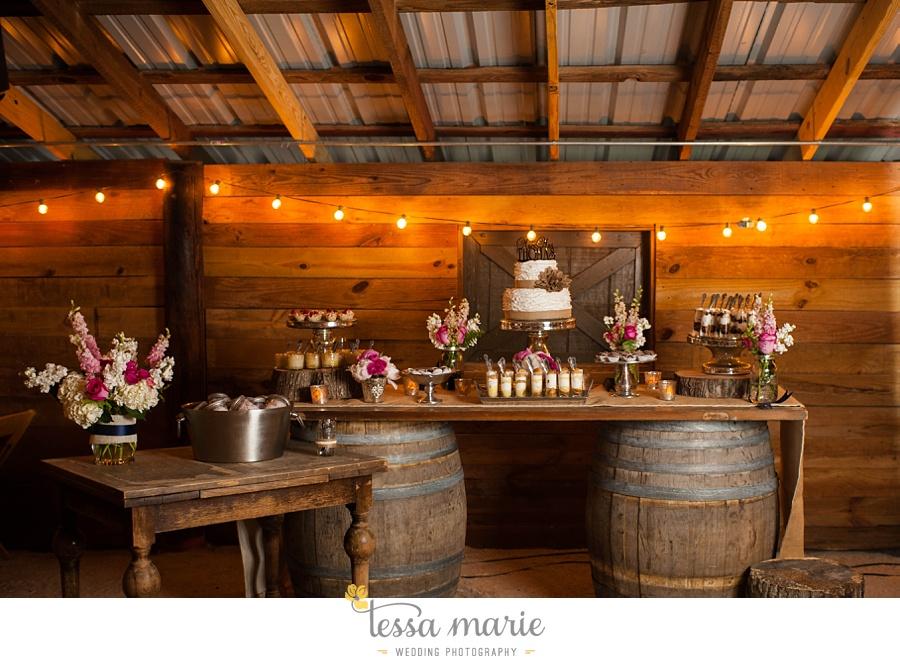 vinewoods_outdoor_wedding_pictures_atlantas_best_wedding_photographer_0117