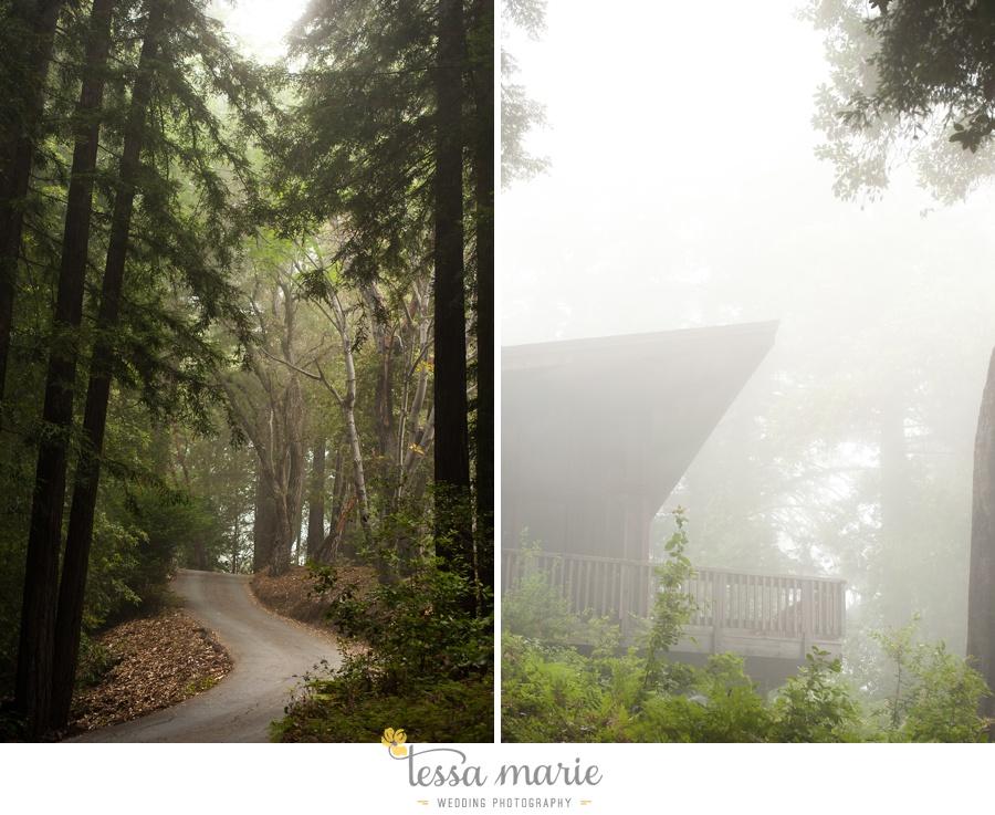 destination_wedding_sequoia_retreat_center_red_wood_forrest_california_coast_0001