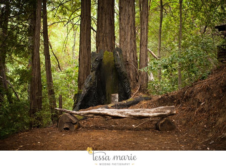 destination_wedding_sequoia_retreat_center_red_wood_forrest_california_coast_0007