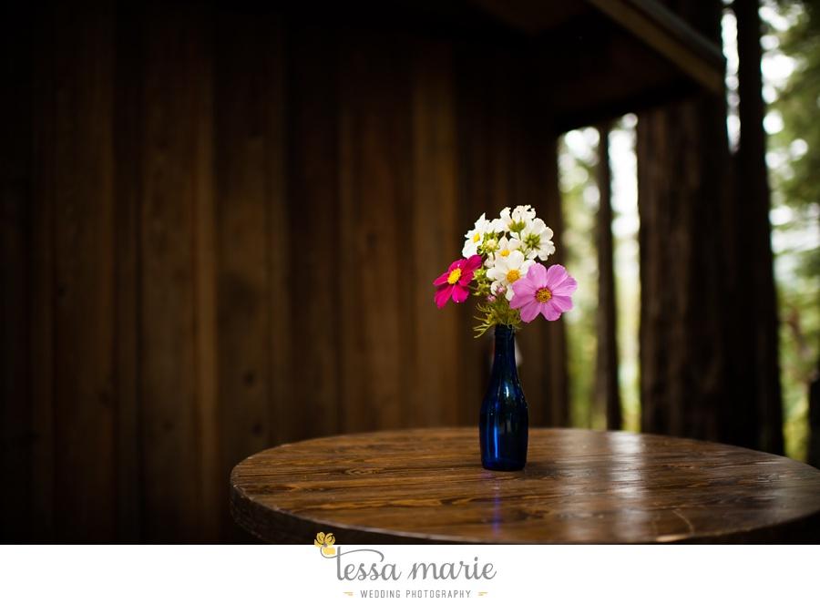 destination_wedding_sequoia_retreat_center_red_wood_forrest_california_coast_0009