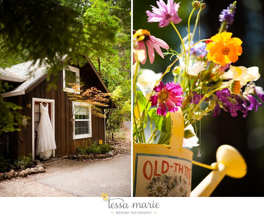 destination_wedding_sequoia_retreat_center_red_wood_forrest_california_coast_0013