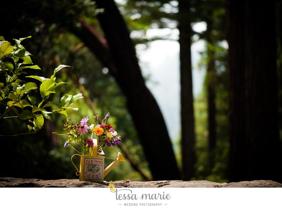 destination_wedding_sequoia_retreat_center_red_wood_forrest_california_coast_0014