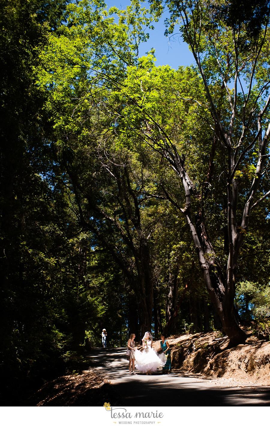 destination_wedding_sequoia_retreat_center_red_wood_forrest_california_coast_0025