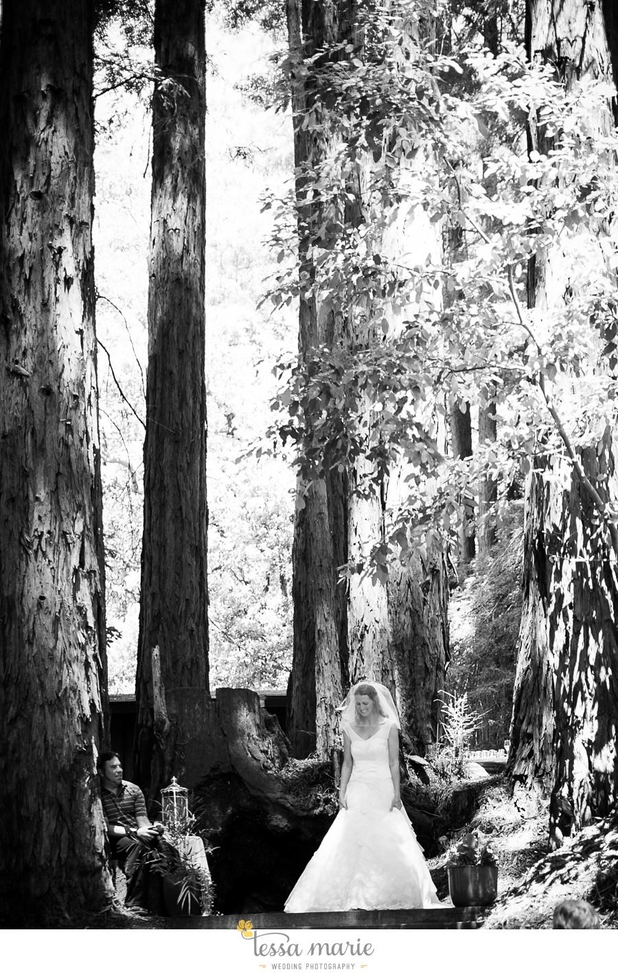 destination_wedding_sequoia_retreat_center_red_wood_forrest_california_coast_0029