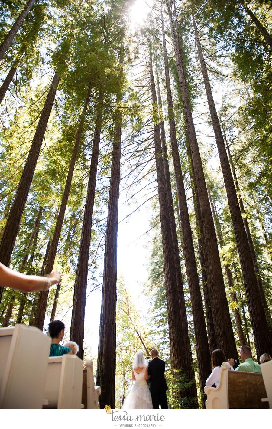 destination_wedding_sequoia_retreat_center_red_wood_forrest_california_coast_0035