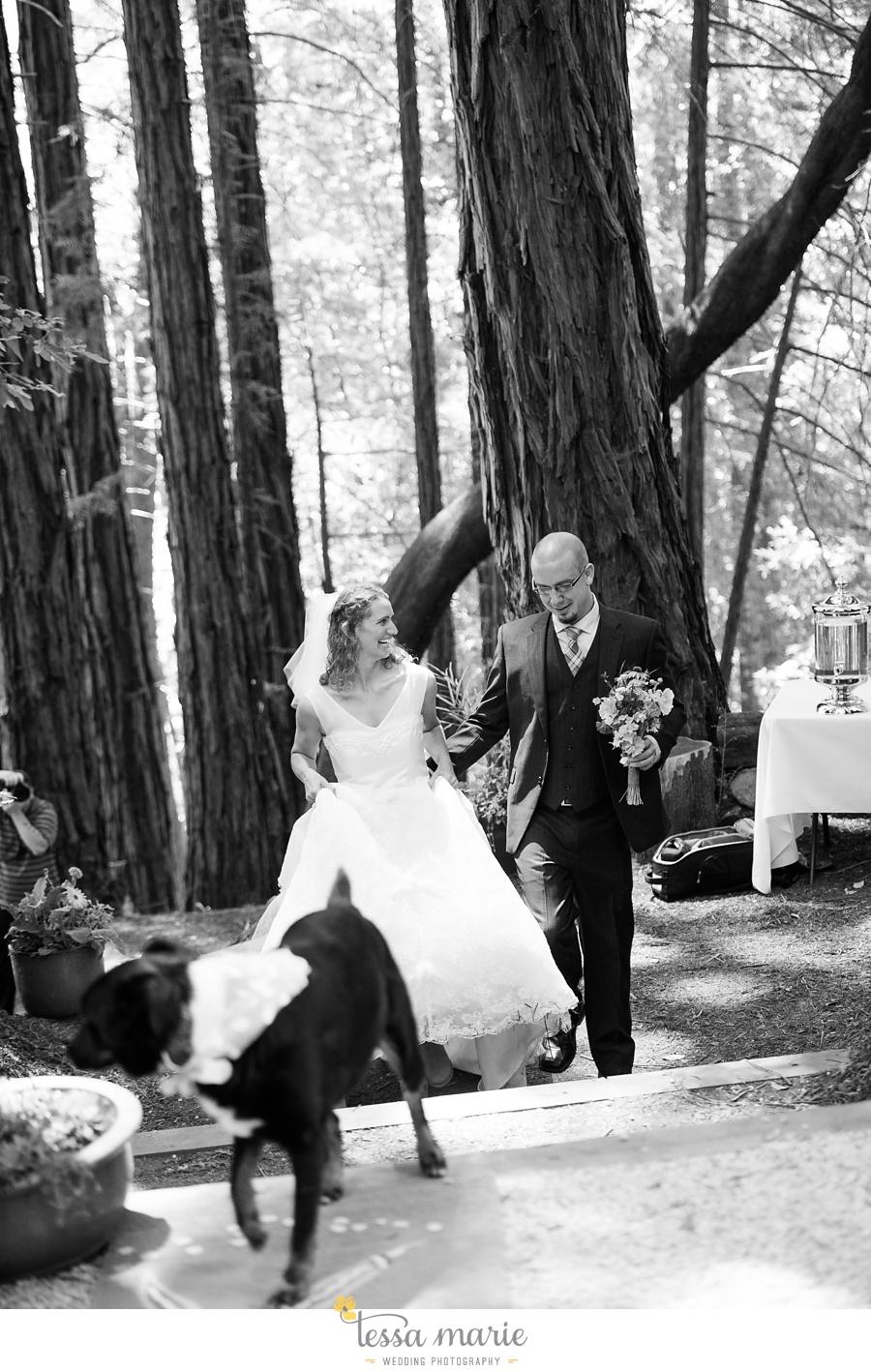 destination_wedding_sequoia_retreat_center_red_wood_forrest_california_coast_0056