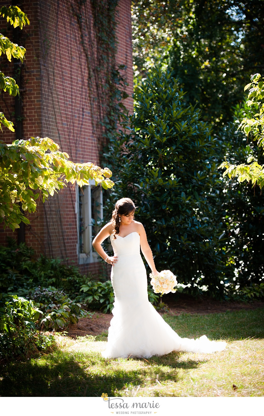 Fernbank farmstay wedding