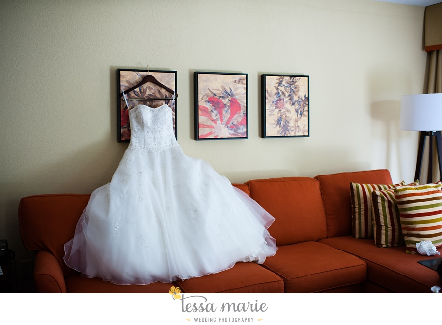 stone_mountain_wedding_outdoor_wedding_pictures_tessa_marie_Weddings_0006