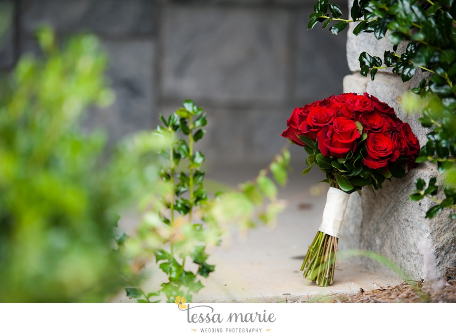 stone_mountain_wedding_outdoor_wedding_pictures_tessa_marie_Weddings_0041