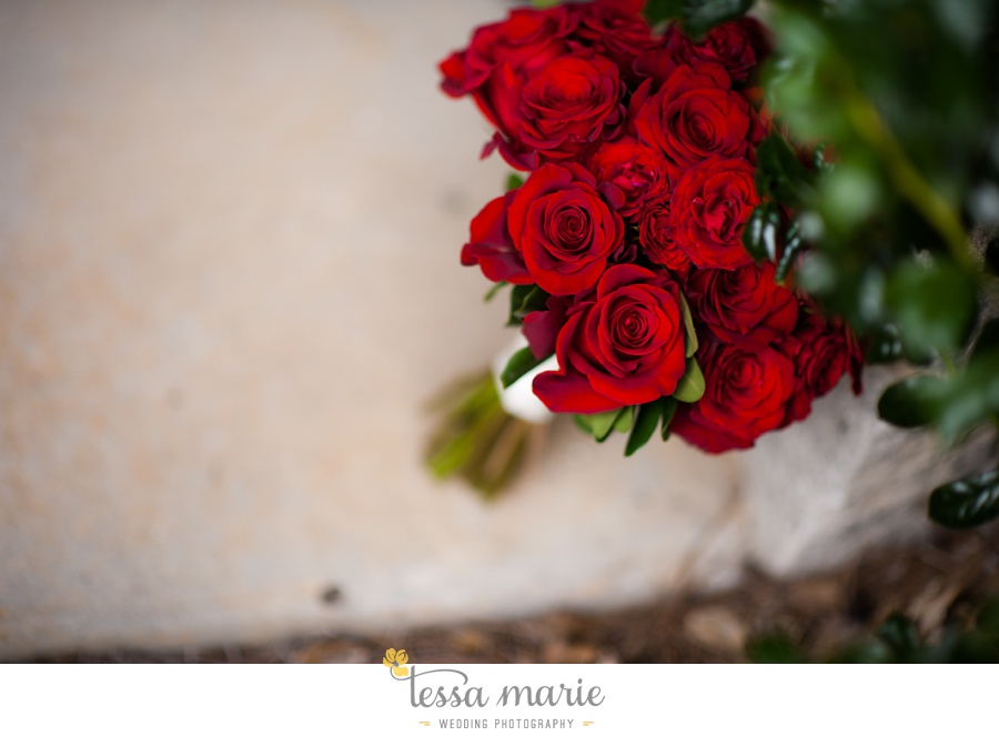stone_mountain_wedding_outdoor_wedding_pictures_tessa_marie_Weddings_0042