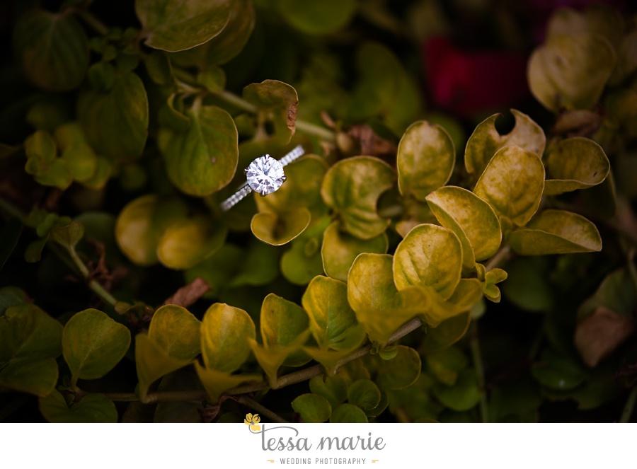piedmont_engagement_pictures_0038