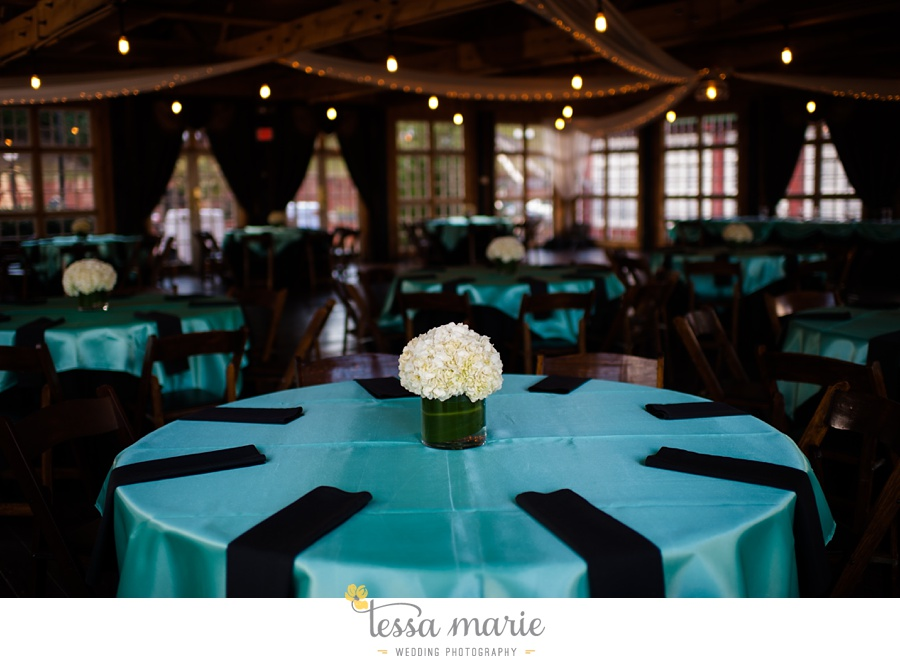 Ivy_hall_wedding_pictures_outdoor_wedding_0098