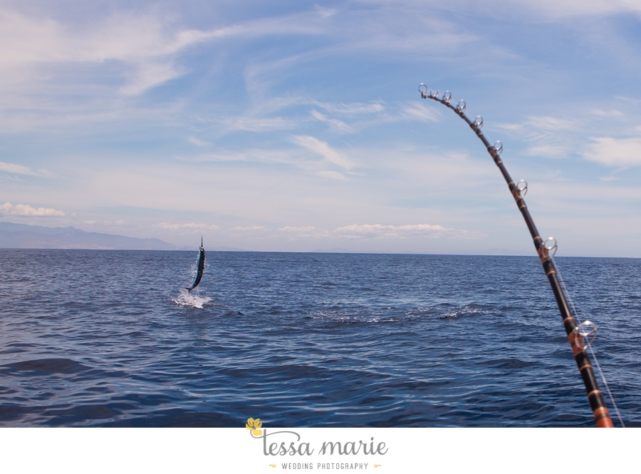 cabo_deep_sea_fishing_pictures_0020