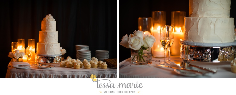 lake_lanier_wedding_pictures_tessa_marie_weddings_0291