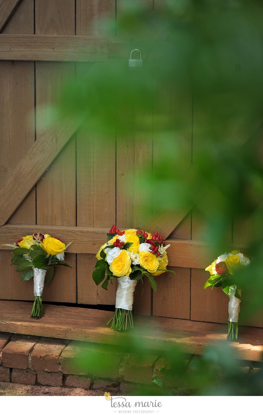 smithonia_farms_athens_ga_outdoor_wedding_pictures_0002