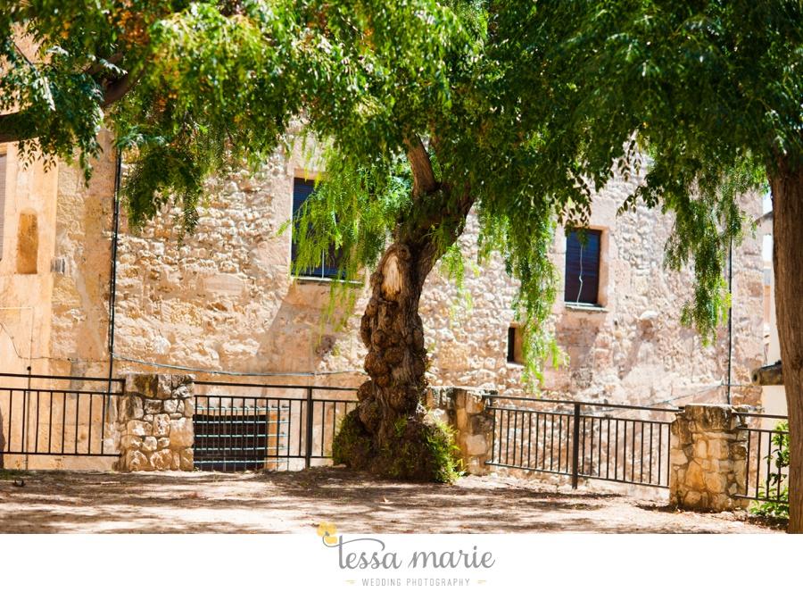 barcelona_destination_wedding_photographer_landscape_imagery_spain_fine_art_european_landscape_details_0044