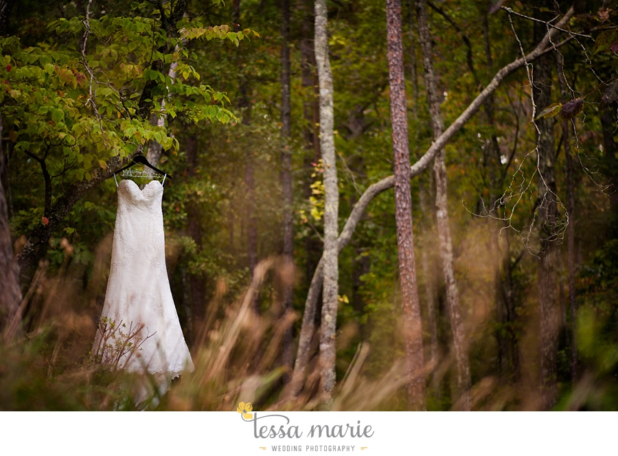 34_foxhall_wedding_outdoor_fall_wedding_andy_beach_hi_note_a_divine_event_tessa_marie_weddings_photography_wedding_pictures