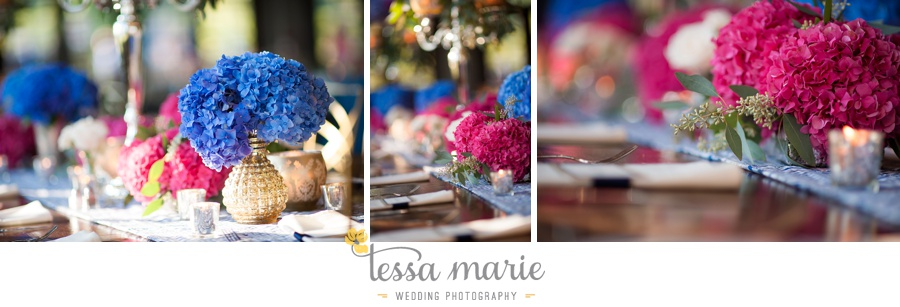 504_foxhall_wedding_outdoor_fall_wedding_andy_beach_hi_note_a_divine_event_tessa_marie_weddings_photography_wedding_pictures