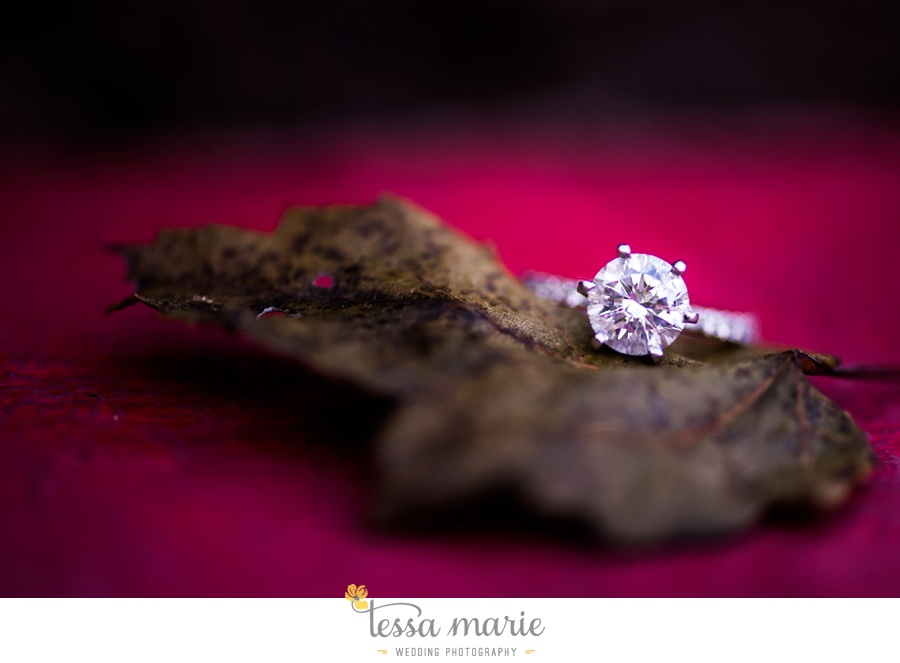 atlanta_wedding_engagement_photographer_0053