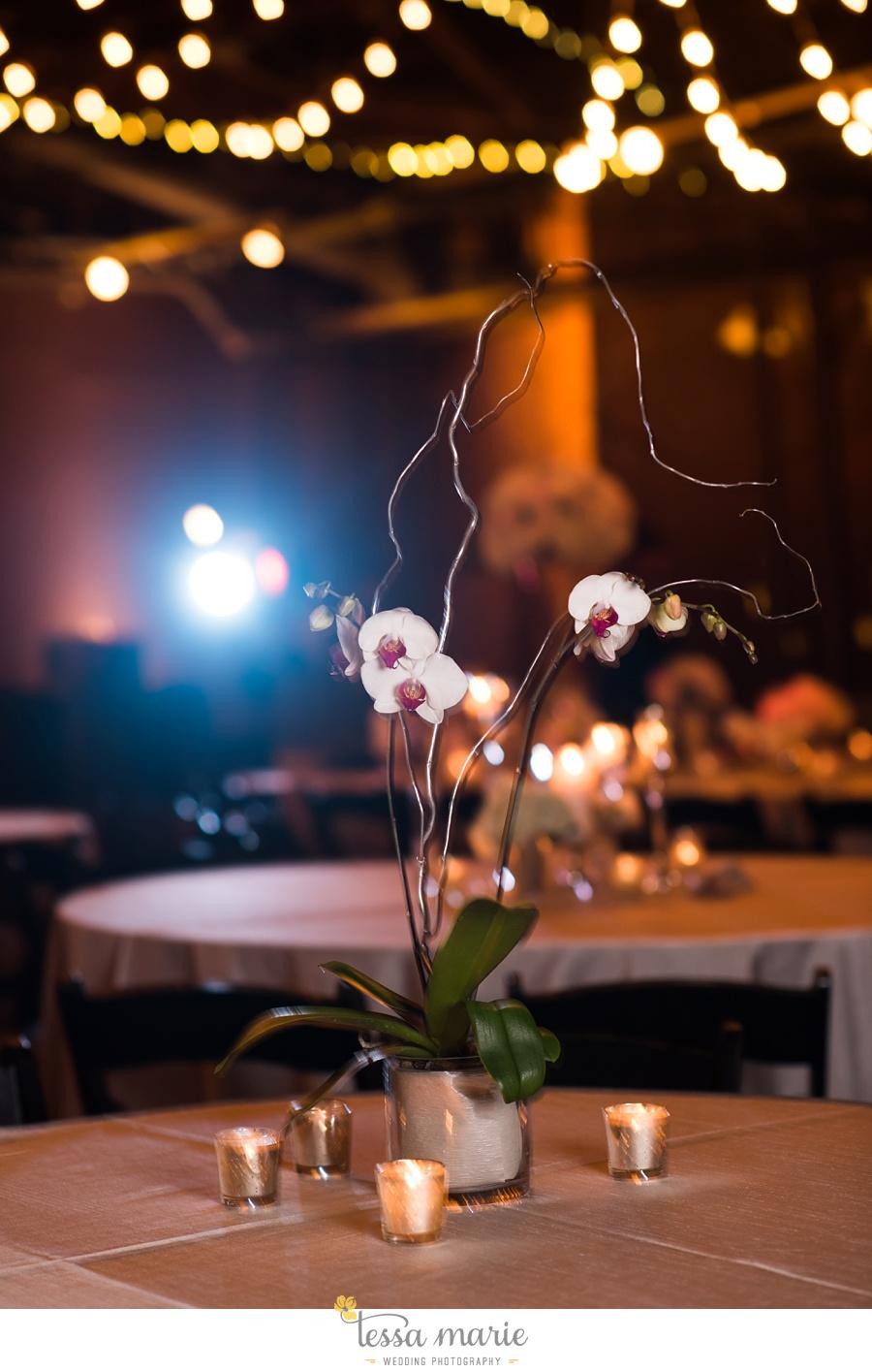 315_tessa_marie_weddings_emotional_moments_photography_king_low_wedding_sam_neil_best_atlanta_wedding_photographer