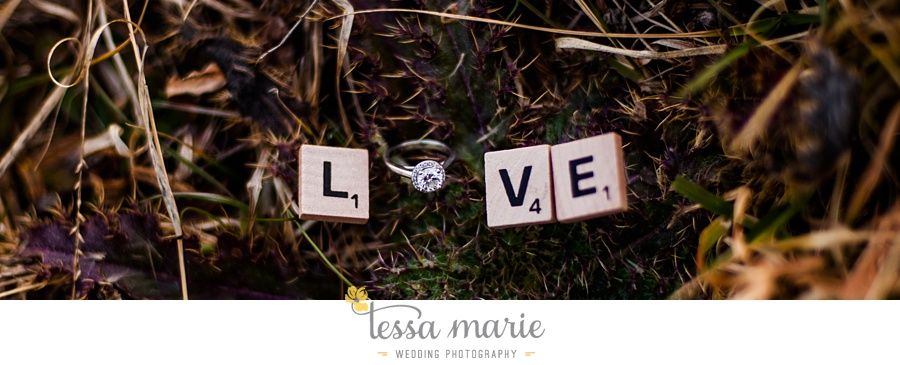 Marietta_engagement_photographer_pictures_tessa_marie_weddings_0042
