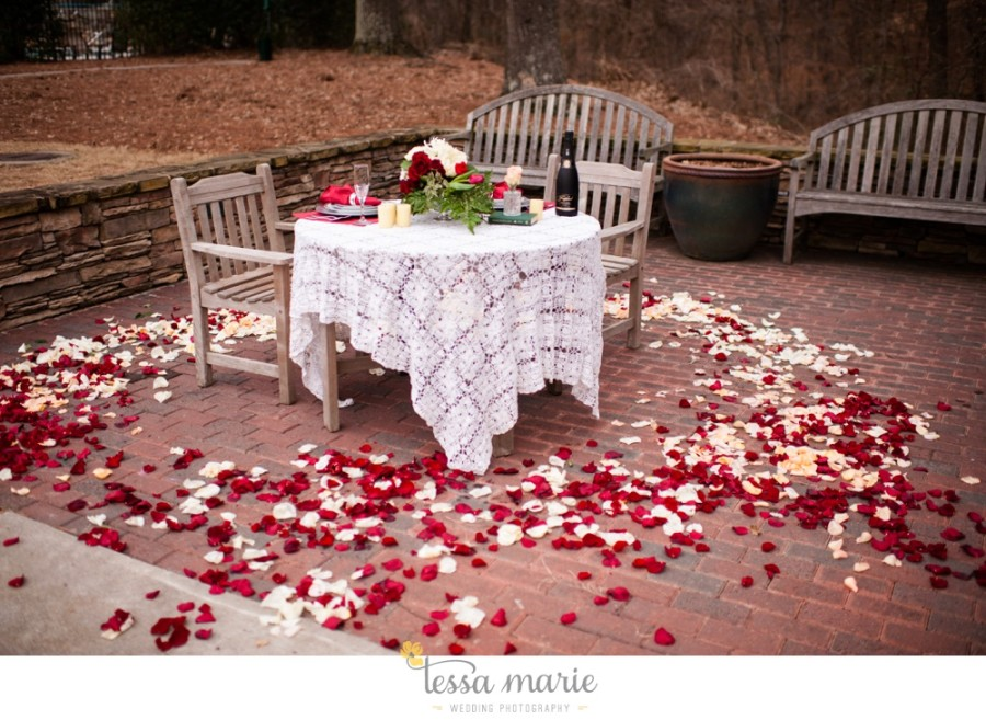 valentines_day_proposal_2015_0003