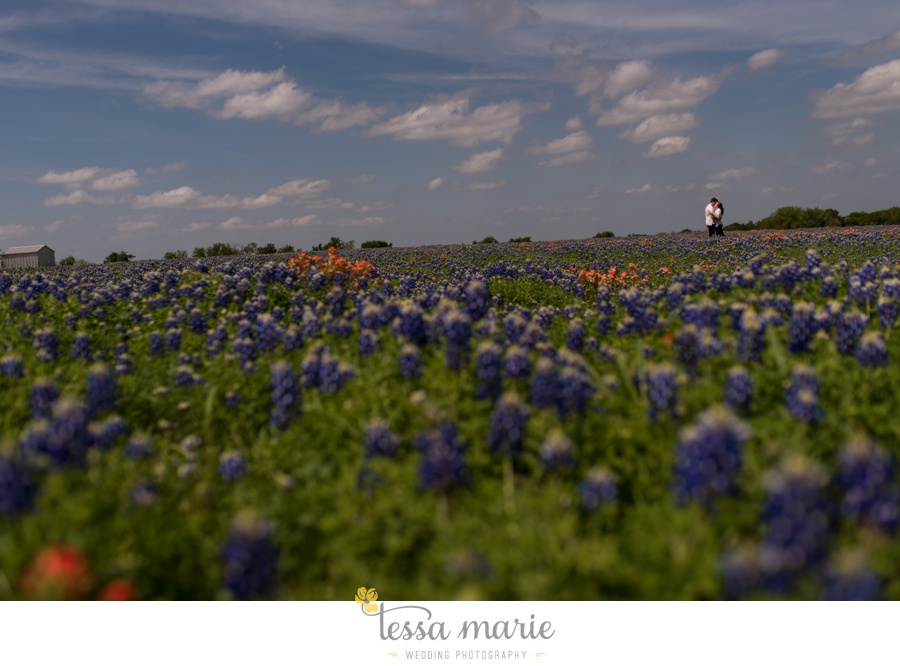fort worth engagement pictures texas wildflower engagement pictures-0068