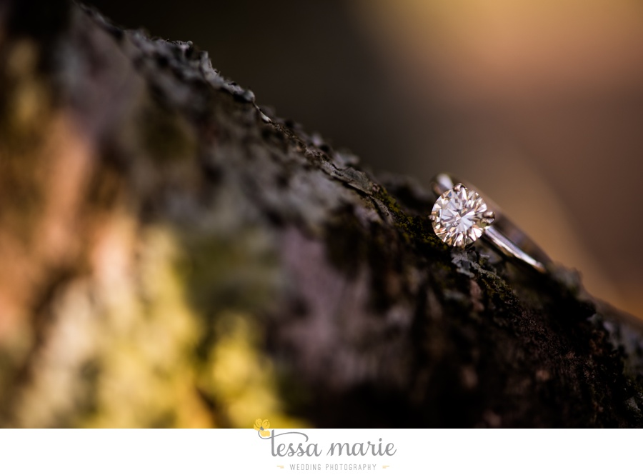 sweet_meadow_farm_engagement_pictures-0032
