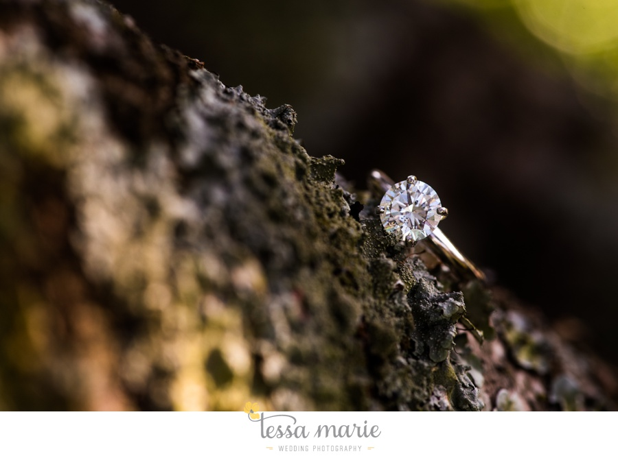 sweet_meadow_farm_engagement_pictures-0033