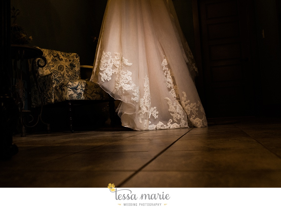 indigo_falls_wedding_pictures_tessa_marie_Weddings_atlantas_finest_catering_Wedding_Angels_honeymoon_bakery_0013