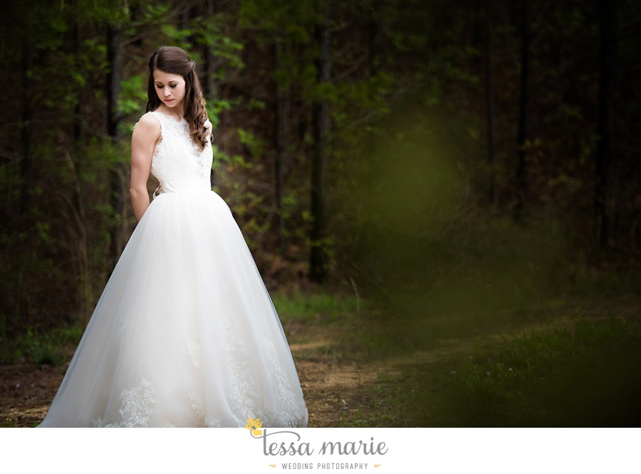 indigo_falls_wedding_pictures_tessa_marie_Weddings_atlantas_finest_catering_Wedding_Angels_honeymoon_bakery_0046