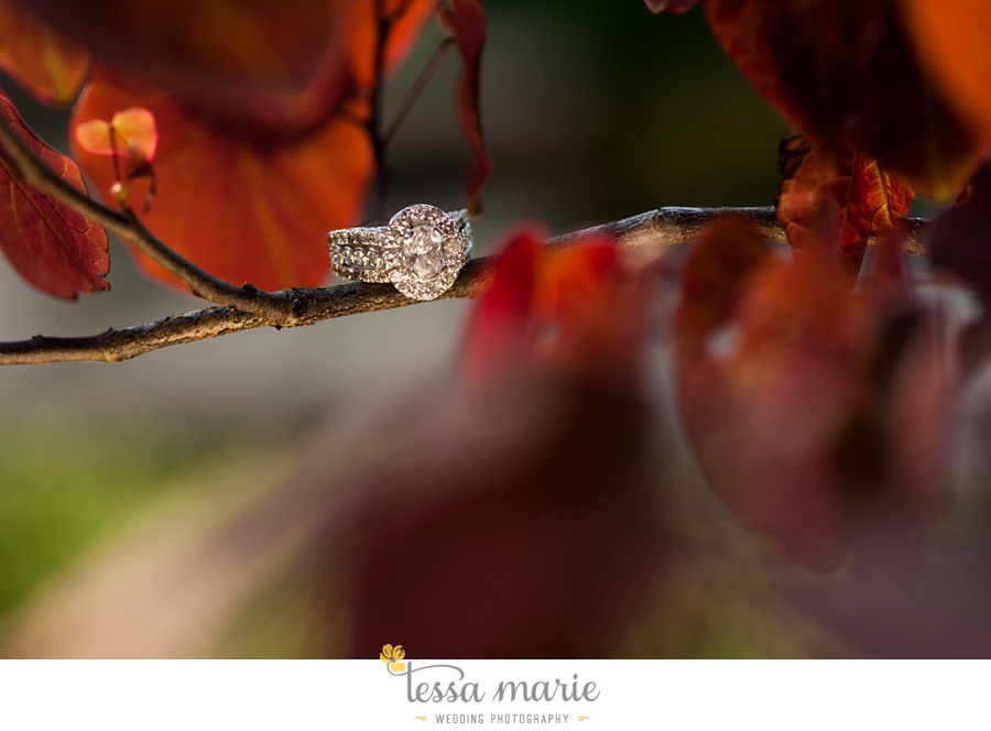 montaluce_engagement_pictures_session_tessa_marie_weddings_0016