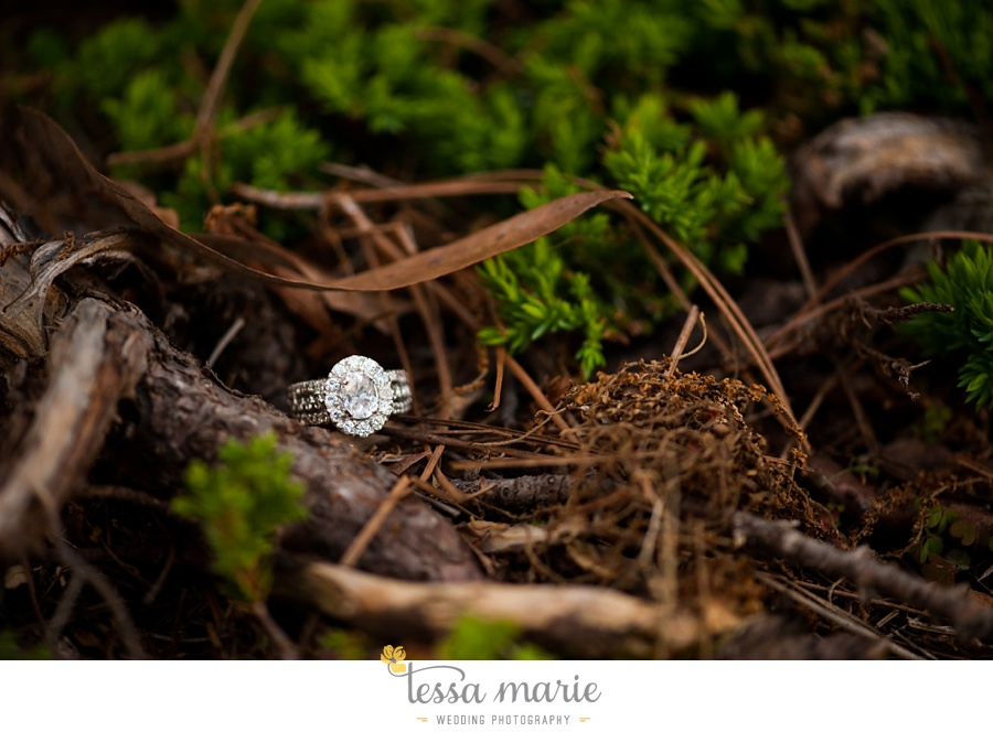 montaluce_engagement_pictures_session_tessa_marie_weddings_0018