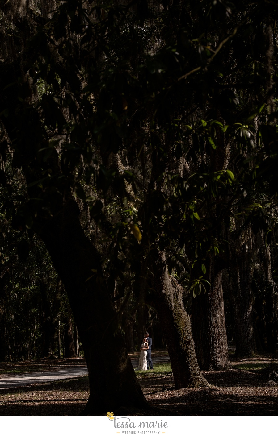 savannah_destination_wedding_photographer_wormsole_elopement_tessa_marie_weddings_essence_of_australia_gown_0113