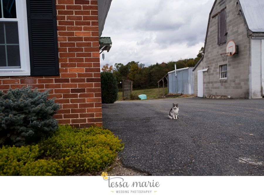 baltimore_outdoor_Wedding_pictures_fall_wedding_farm_wedding_tessa_marie_Weddings_0012
