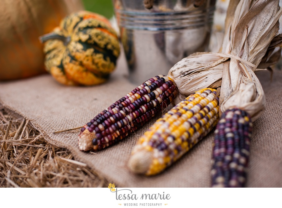 baltimore_outdoor_Wedding_pictures_fall_wedding_farm_wedding_tessa_marie_Weddings_0174