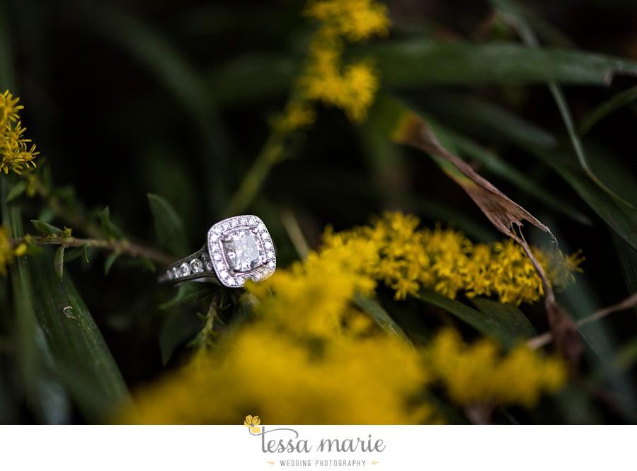 piedmont_park_engagement_pictures_tessa_marie_weddings_0023