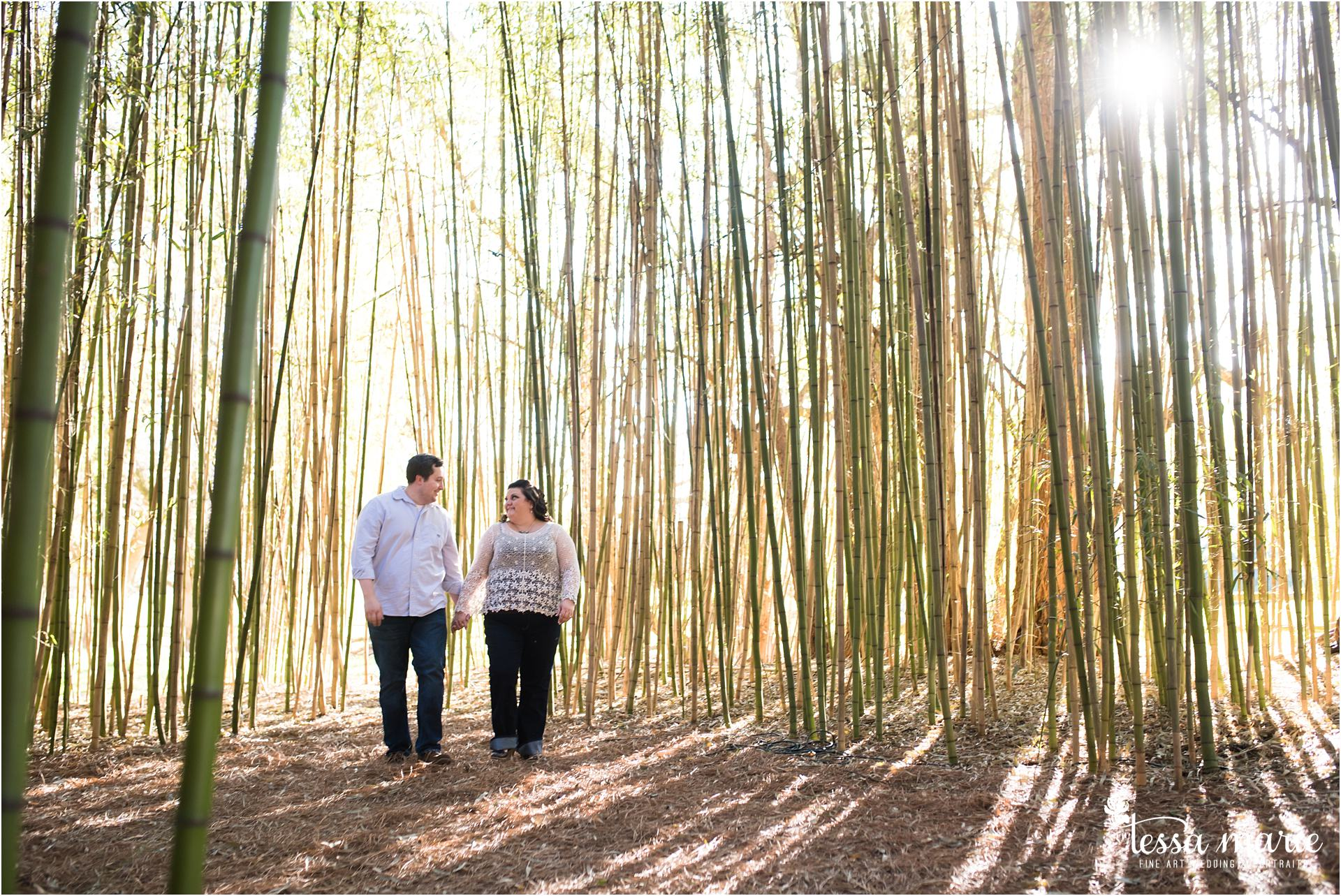 Barnsley_gardens_engagement_pictures_wedding_photographer_0024