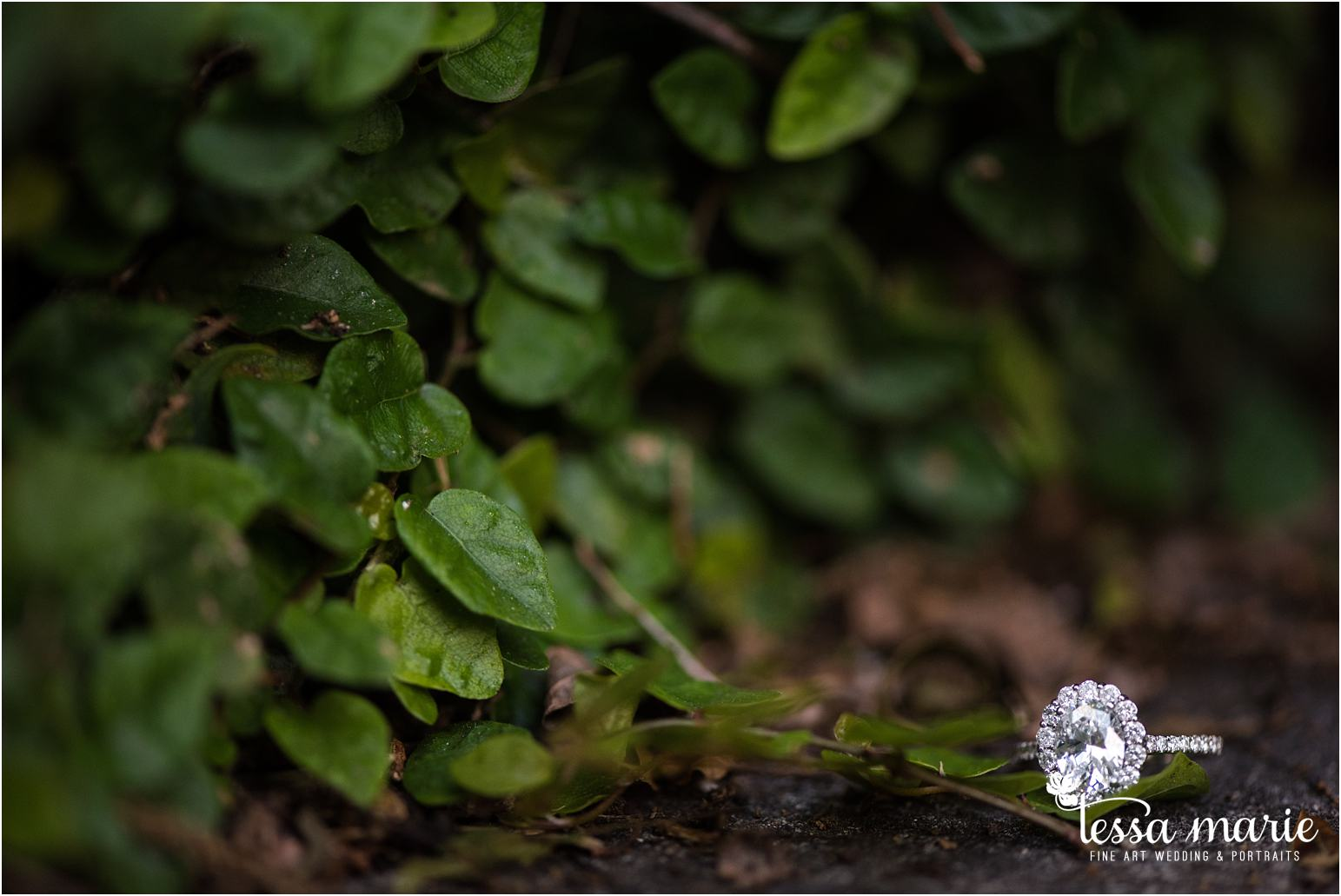 athens_ga_uga_university_of_georgia_engagement_pictures_north_campus_tessa_marie_weddings_athens_wedding_photographer_0047