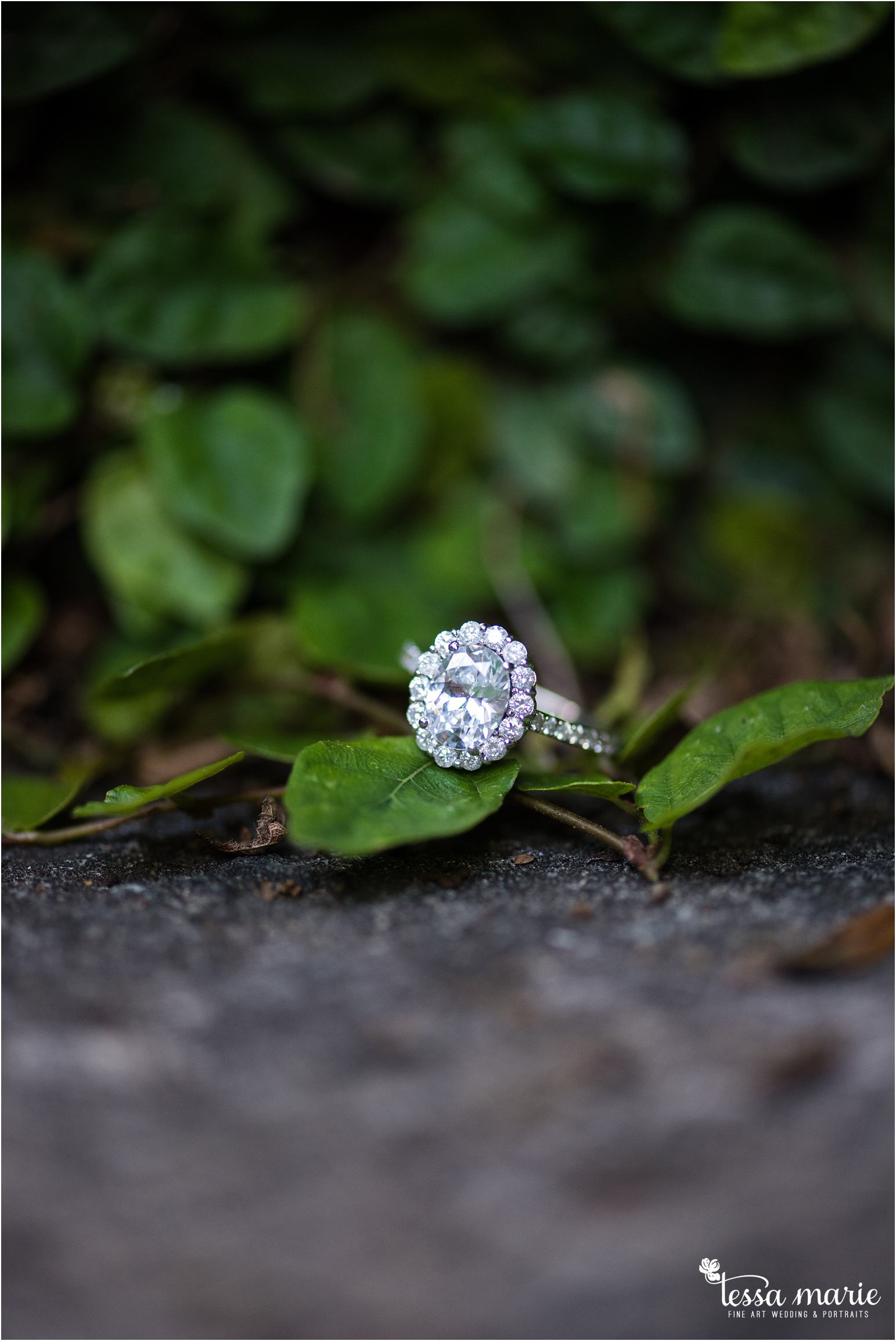 athens_ga_uga_university_of_georgia_engagement_pictures_north_campus_tessa_marie_weddings_athens_wedding_photographer_0105